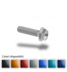 Bullone in ergal 004 testa esagonale 6x20mm